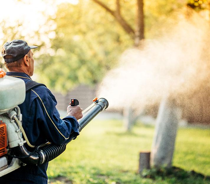 mosquito control detroit michigan metro